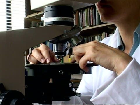 scientist looking down microscope, places slide on stage, moves it then focuses, cu - scienziata video stock e b–roll