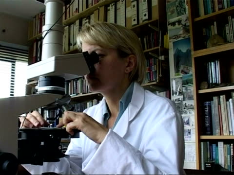 scientist looking down microscope, places slide on stage, moves it then focuses, ms - scienziata video stock e b–roll