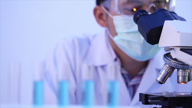 scientist looking through a microscope working at the laboratory - tecnico video stock e b–roll