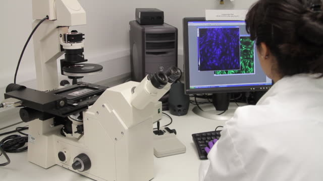 scientist looking through microscope and check results on screen  - dna鑑定点の映像素材/bロール