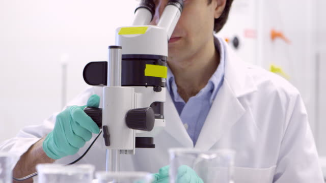 MS Scientist looking through microscope in research laboratory