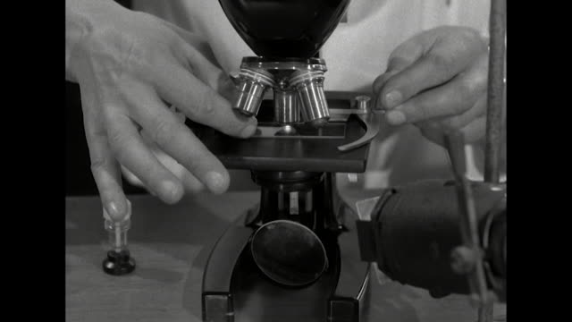 a scientist looks into a microscope - microscope stock videos & royalty-free footage