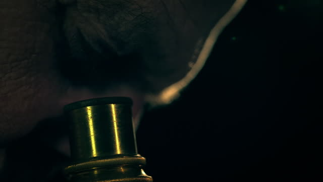 A scientist looks into an old brass microscope