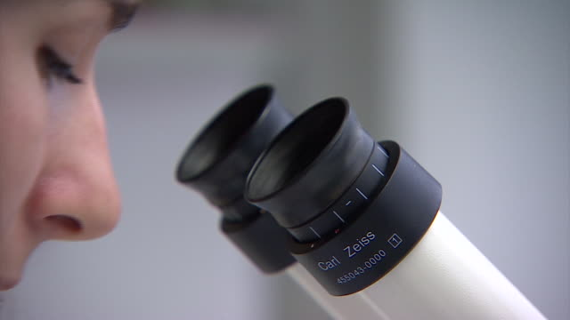 A scientist looks through a microscope in a laboratory.