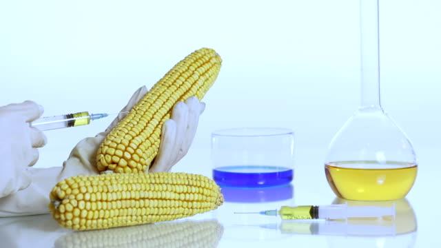 HD DOLLY: Wissenschaftler Änderung des Corn Genom