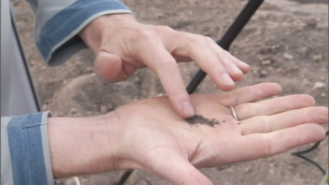 a scientist places some soil from a volcano into his hand and feels its composition. - geology stock videos & royalty-free footage