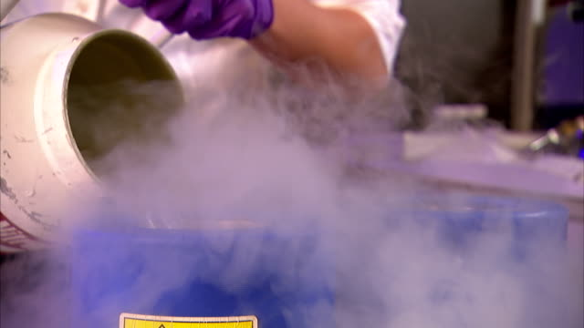 a scientist pours liquid nitrogen from a metal can into insulated canisters. - frozen stock videos & royalty-free footage