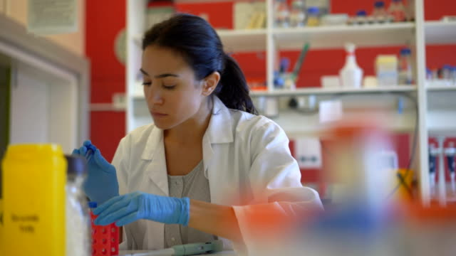 Scientist preparing medical samples for test