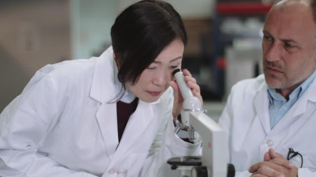 Scientist team working in laboratory