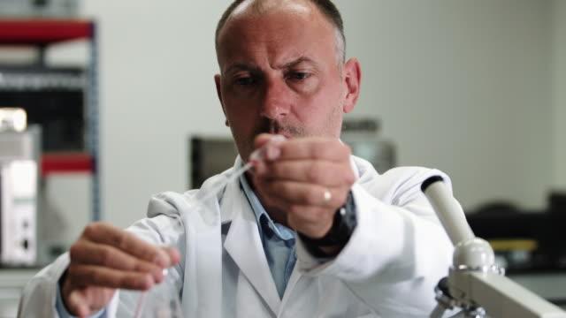 vídeos de stock, filmes e b-roll de scientist team working in laboratory - amostra científica