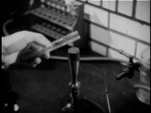 stockvideo's en b-roll-footage met 1936 cu scientist testing yeast at anheuser busch brewery in st. louis / missouri, united states  - documentairebeeld