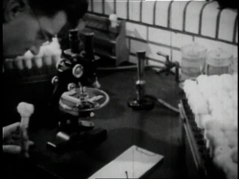 1936 cu scientist testing yeast under a microscope at anheuser busch brewery in st. louis / missouri, united states  - anheuser busch inbev stock videos and b-roll footage