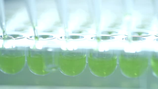 科学者転送ミックス少量液体 96 よく料理内で - 酸点の映像素材/bロール
