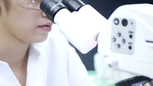 Scientist using microscope and looking a sample