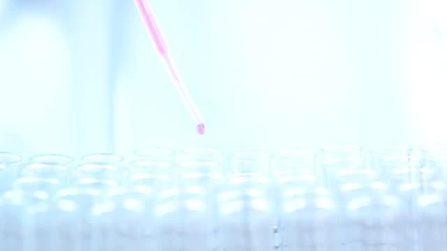 wissenschaftler mit weißen schutzanzug mit pipette füllen chemische substanz in reagenzgläsern während der experimente im labor zu machen. - phiole stock-videos und b-roll-filmmaterial