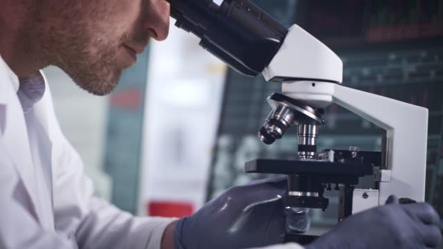 wissenschaftler, der mit dems. computermonitore mit daten im hintergrund - profil stock-videos und b-roll-filmmaterial