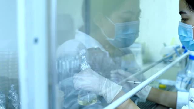 scientist works experiment medicine research in laboratory - pallone di vetro video stock e b–roll