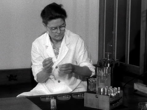 a scientists adds specimens to petri dishes at the colindale public health laboratory 1955 - laboratory equipment stock videos & royalty-free footage