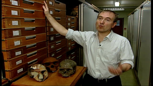 scientists close to mapping genetic code for neanderthal man dr chris stinger interview sot can begin to isolate genes for various physical attributes - genetic variation stock videos & royalty-free footage
