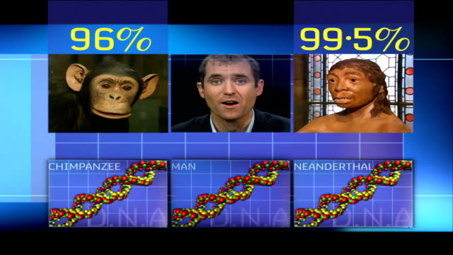 Scientists close to mapping genetic code for Neanderthal man Reporter to camera / GRAPHIC DNA molecules for chimpanzee man Neanderthal