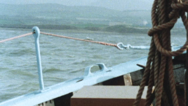 vidéos et rushes de 1981 montage scientists collecting samples of marine life, including seaweed and fish, to test for radioactivity near a nuclear processing facility / united kingdom - varech