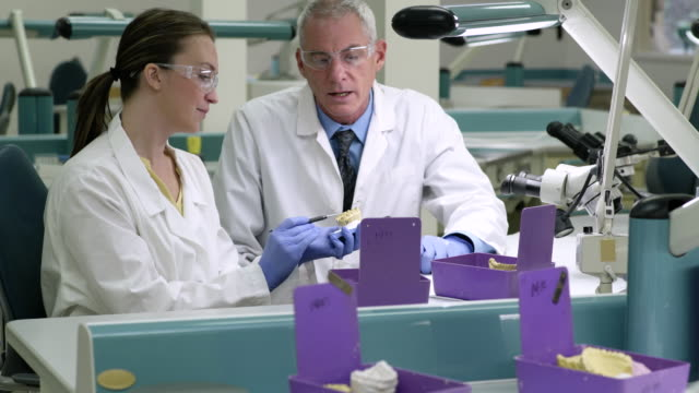 scientists examining a dental model - dental health stock videos & royalty-free footage