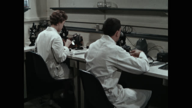 scientists examining samples under microscopes in laboratory - medical research stock videos & royalty-free footage