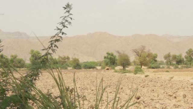 Scientists have warned that swathes of South Asia may be uninhabitable due to rising temperatures by 2100 and in the desert community of Sibi in...