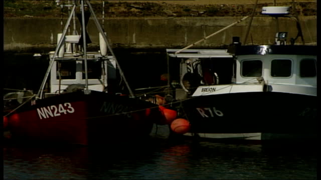 Scientists predict collapse of fish stocks by 2048 fishing boats and fishermen unloading a catch ENGLAND SuffolkLowestoft EXT General view of fishing...