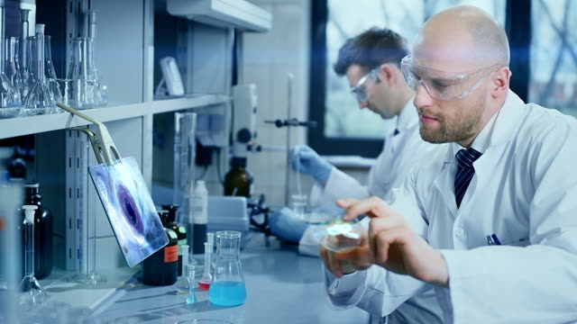 scientists working in a laboratory - biochemistry stock videos & royalty-free footage