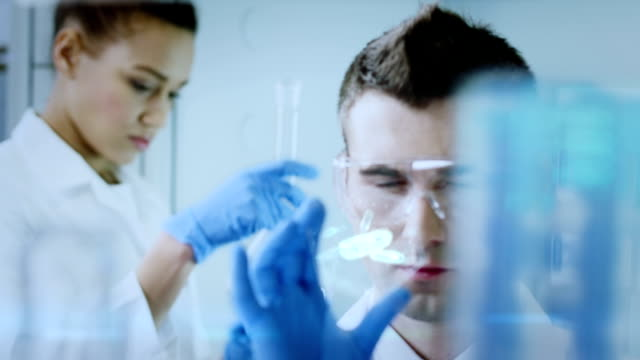 scientists working in a research laboratory - biotechnology stock videos and b-roll footage