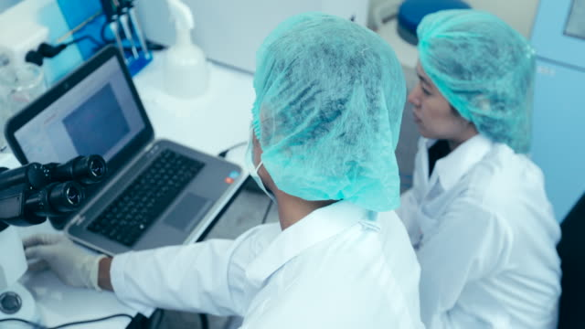 scientists working in the laboratory, concept science and technology - scienziata video stock e b–roll