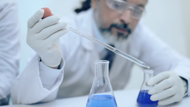 scientists working with chemicals in a laboratory. - scientist stock videos and b-roll footage