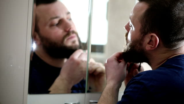 Scissors for beard