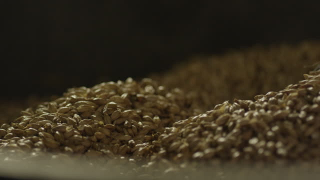 scoop stirring barley kernels - orzo video stock e b–roll