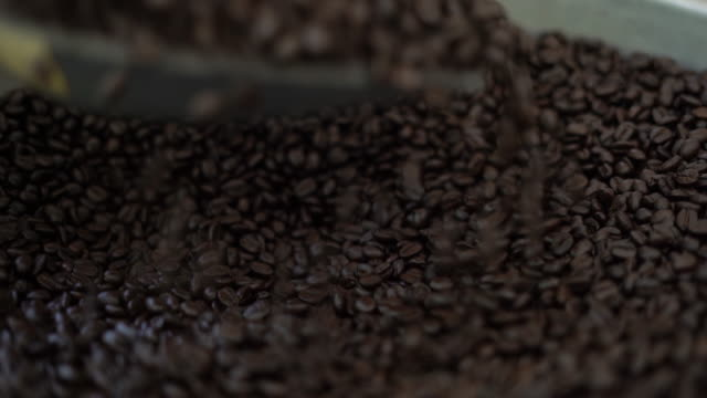 scooped coffee beans - serving scoop stock videos & royalty-free footage
