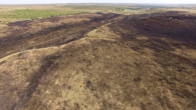 aerial: scorched earth in field after fire - dirt stock videos & royalty-free footage