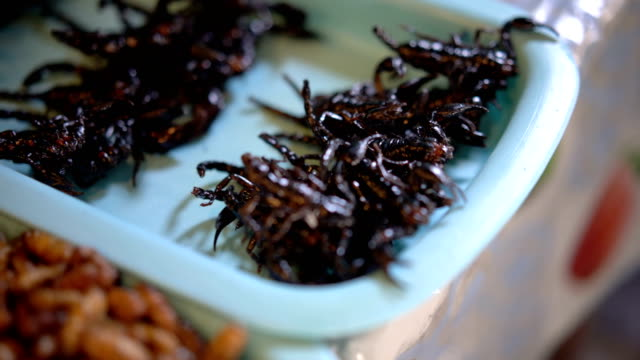 Scorpion fried, worms and grasshoppers snack street food in Thailand.
