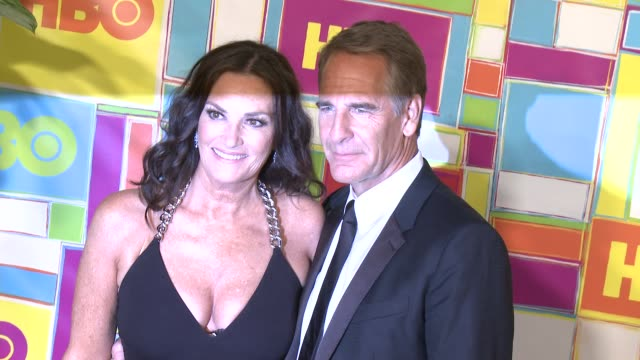vídeos y material grabado en eventos de stock de scott bakula and chelsea field at hbo's official 2014 emmy after party at the plaza at the pacific design center on august 25 2014 in los angeles... - premios emmy
