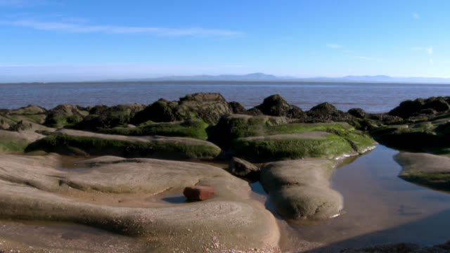 scottish beach on a bright sunny day - tidal pool stock videos and b-roll footage