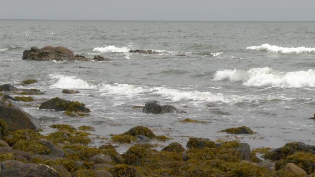 Schotse kust op een grijze bewolking herfst dag
