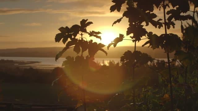 Scottish Highlands Sunrise