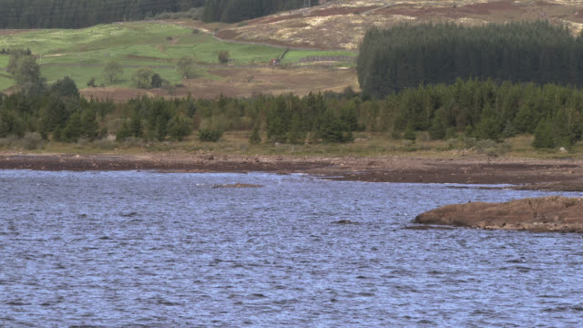 scottish loch in dumfries and galloway , south west scotland shot in late summer - dumfries and galloway stock videos & royalty-free footage