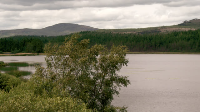 scottish loch in south west scotland - johnfscott stock videos & royalty-free footage