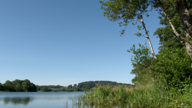 scottish loch on a bright sunny day - johnfscott stock videos and b-roll footage