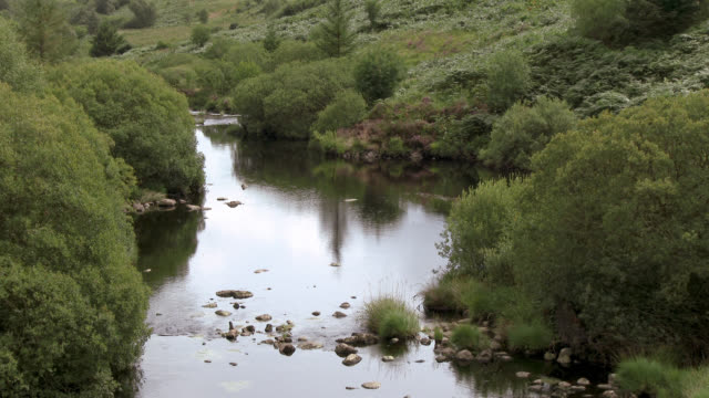 scottish river in a rural setting - johnfscott video stock e b–roll