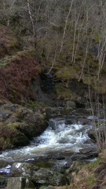 scottish river on an overcast spring morning - johnfscott stock videos & royalty-free footage