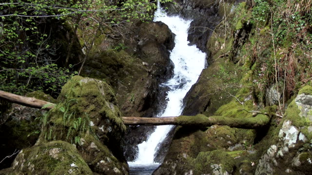 scottish rural scene of a waterfall on a small stream - johnfscott stock videos & royalty-free footage