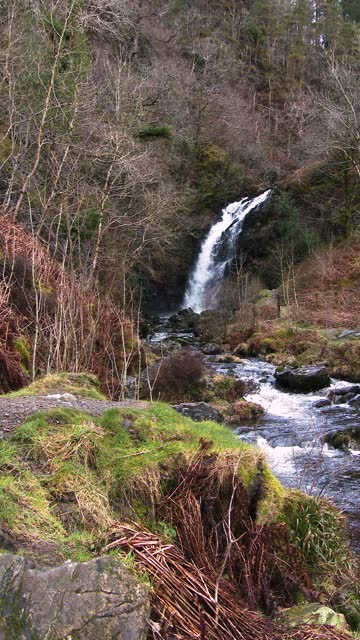scottish waterfall in rural setting in spring - johnfscott stock videos & royalty-free footage