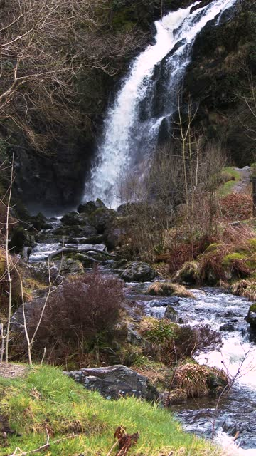 scottish waterfall on a spring morning - johnfscott stock videos & royalty-free footage